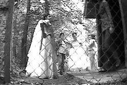 Свадебный писс в парке